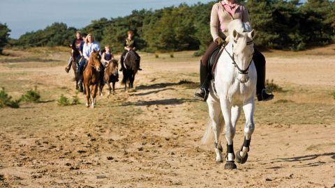 Paardrijden Weert